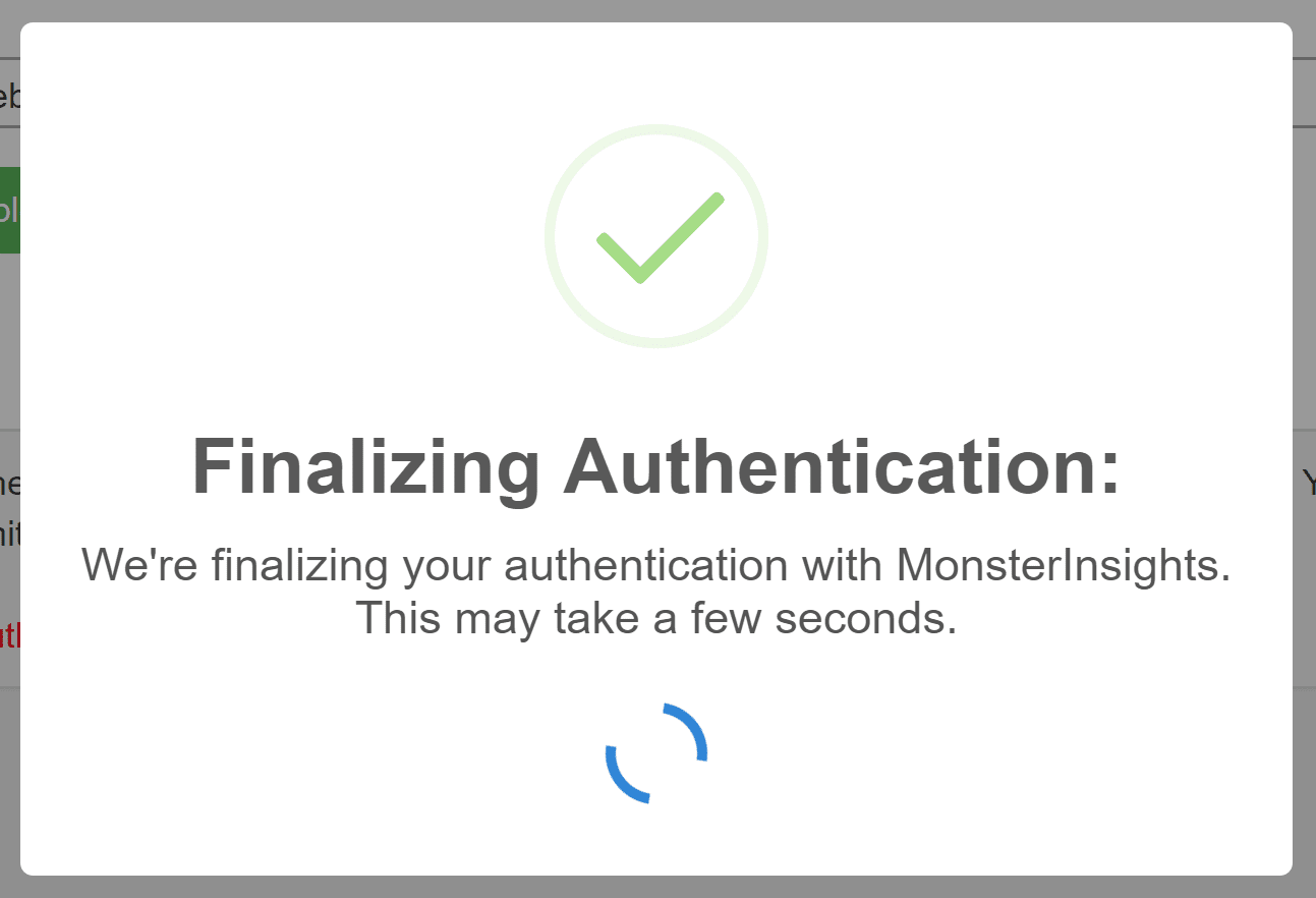 MonsterInsights Finalizing Authentication