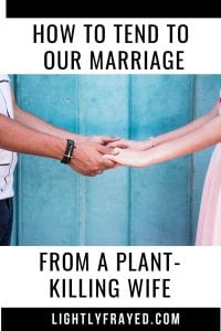 Lessons on how to nurture marriage from a plant killing wife