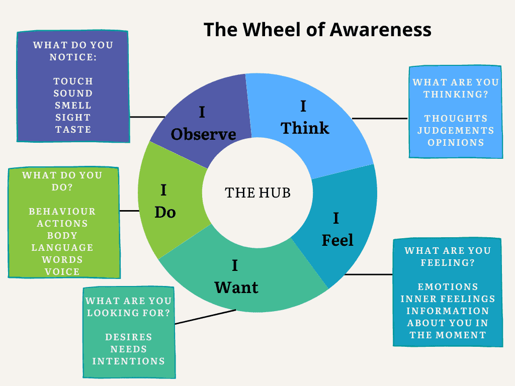 The wheel of awareness helps increase your self-awareness